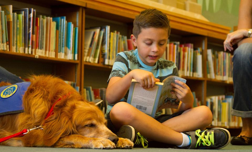 Library Furry Friends